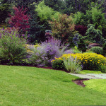 backyard-landscaping-ideas